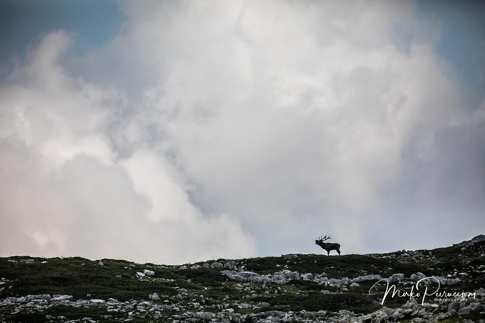Phototour-Abruzzo-2019-3