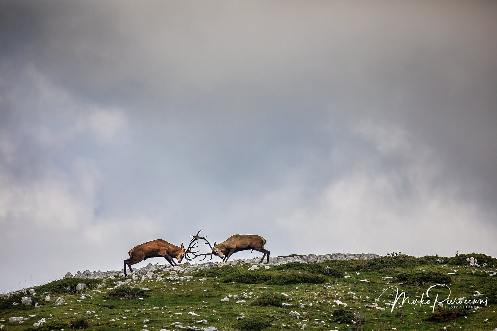 Phototour-Abruzzo-2019-5
