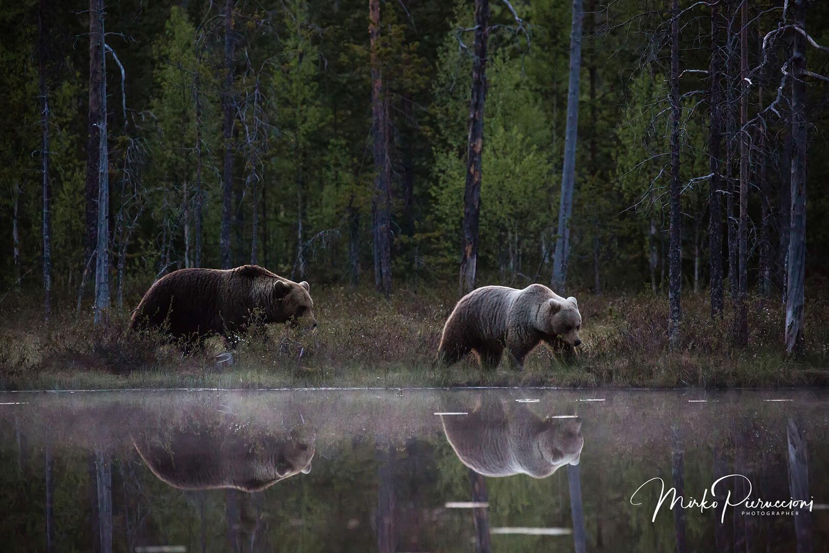 Phototour-Finlandia-2019-5