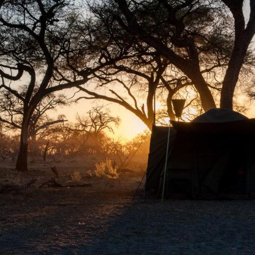 Botswana 2012 Gallery 09