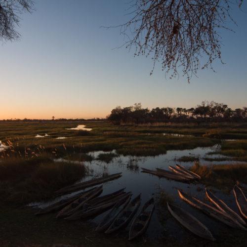 Botswana 2012 Gallery 12