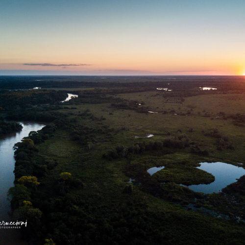Pantanal Tour 2017 Gallery 10