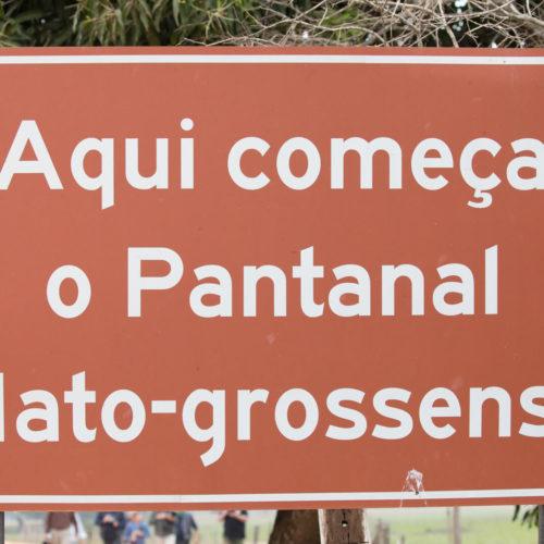 Pantanal Tour 2018 Gallery 08